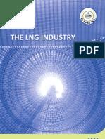 giignl - LNG Industry -2009