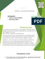 parasitologia 2 cocsidiosis