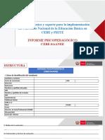 Informe Psicopedagógico CEBE
