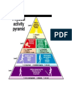 NOTES - THE PHYSICAL ACTIVITY PYRAMID