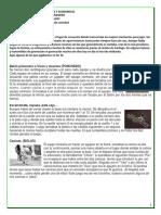 JUEGO Y DICTADURAS MILITARES DE AMERICA  LATINA