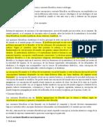 Filosofía del Derecho - Concepción y corriente filosófica; teoría e ideología.