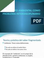 IMPACTO AMBIENTAL COMO PROBLEMA INTERDISCIPLINARIO.pptx