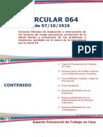 Presentación - CIRCULAR 064.pdf