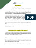 PLANO DE AULA - ORIENTAÇÕES.pdf