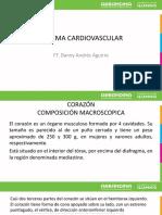 Anatomia y fisiologia cardiaca