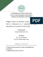 Ante Proyecto - Sandia