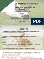 SISTEMAS DE PRODUCCION CUNICOLA taller 3