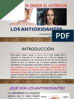 LOS ANTIOXIDANTES (1)