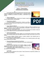 03. O Despertar da Consciência.pdf