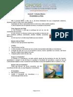 08. O Caminho e a Vida.pdf