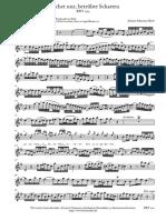 Weichet nur, betrübte Schatten BWV 202 J.S.BACH.pdf