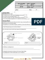 Devoir de Synthèse N°3 - SVT - 1ère AS  (2008-2009) Mr zarrouk ridha.pdf
