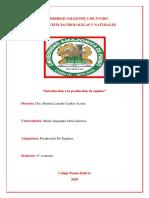 TRABAJO DEL ORIGEN DE EQUINOS EN BOLIVIA