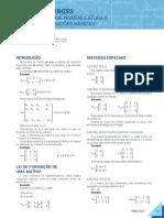 020-Matemática-1-MATRIZES-TEORIA, NOMENCLATURA E 20 OPERAÇÕES BÁSICAS.pdf