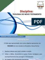 11teologiadonovotestamento-140522162349-phpapp02