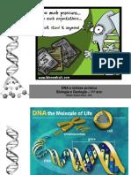 dna_e_sntese_proteica.pdf