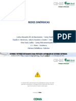Redes_Sinergicas_Carlos Alexandre