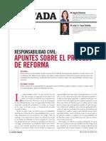 Responsabilidad Civil Apuntes Sobre El procéso de reforma