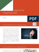 La Productividad en Las Organizaciones
