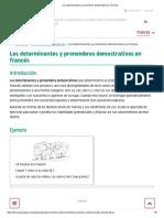 Los determinantes y pronombres demostrativos en francés