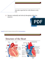 Heart -  Revision Doc [06Nov'10]