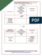 Lesschémasactantiels_2.pdf