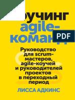 kouching-agile-komand.pdf