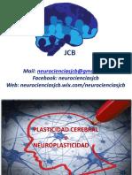 4plasticidadcerebraloneuroplasticidad-150908152502-lva1-app6891