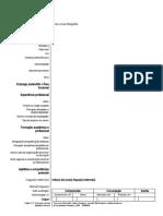 Europass formulário CV