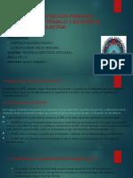 expo seguridad industrial.pptx