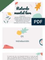 RETARDO MENTAL LEVE.pdf