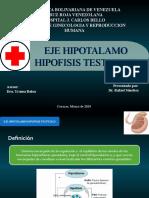 eje hipotalamo hipofisis testiculo.pptx