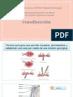 venodisección.pptx
