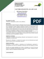 INFLUENCIA_DE_LOS_VIDEO_JUEGOS_EN_EL_AUL.pdf