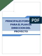 Formato- Acta de constitución