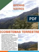Semana 3 Ecosistemas Terrestres
