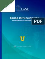 Guías intruccionales Psicología Clínica Y Psicología de la Salud.docx