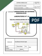lab11 hidraulica