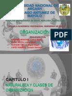 ORGANIZACION (CAP I).pdf