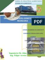 346848171-Informe-3-Osmodeshidratacion-de-La-Manzana (1).docx