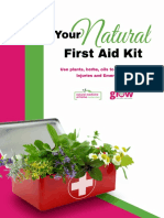 michelle-sands-natural-first-aid-kit