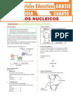 Los-Ácidos-Nucleicos-Martes 22-09- 4to-Grado-de-Secundaria