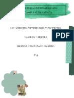 LA GRAN CARRERAD.docx