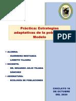 Practica 10- Estrategias de Adaptabilidad
