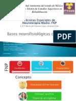 Facilitacion neuromuscular propioceptiva BASES