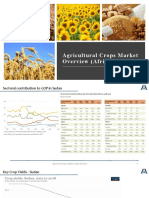 Agriculture market in Sudan - draft.pptx
