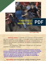 violentainmediulscolar_prezentareppt