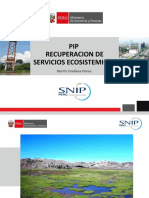 PIP RECUPERACION DE BOFEDALES (3)