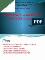 Dérivation et drainage urinaire en urgence.ppt